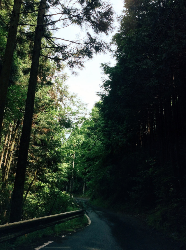Bind | Fold Japanese Textile Tour 2015 - The road to Miyama
