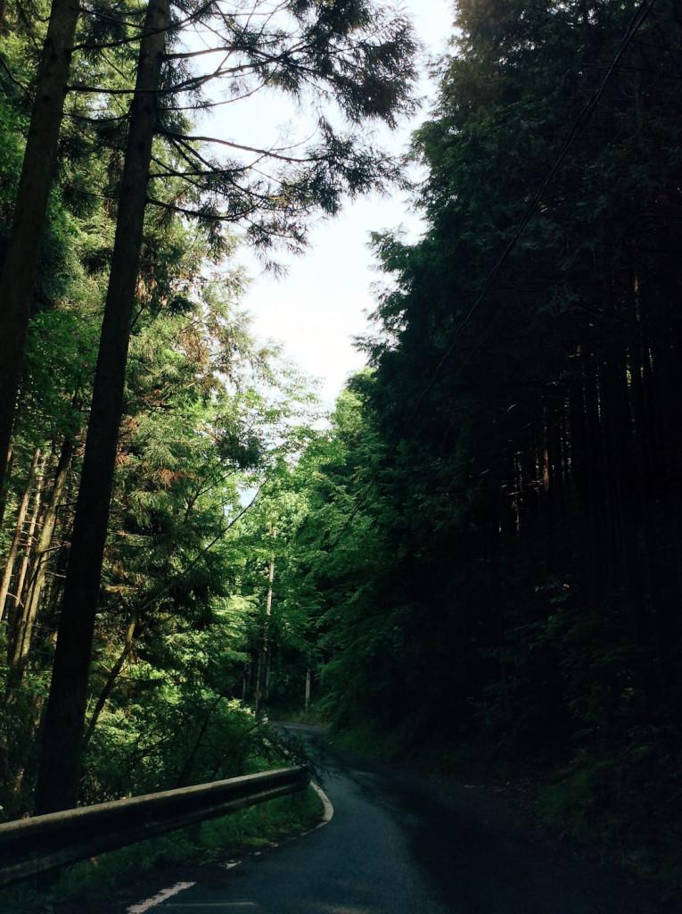 Bind | Fold Japanese Textile Tour 2015 - The road to Miyama