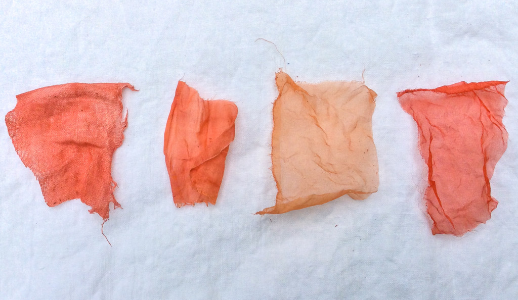 Madder Dyeing by Bind | Fold